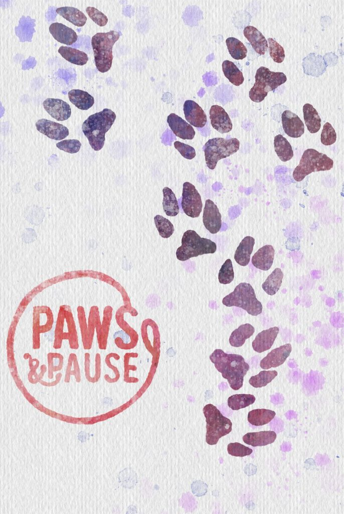 Paws and Pause